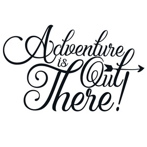 adventure is out there arrow quote