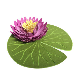 waterlily 3d