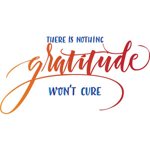 there is nothing gratitude won't cure