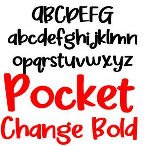 zp pocket change bold
