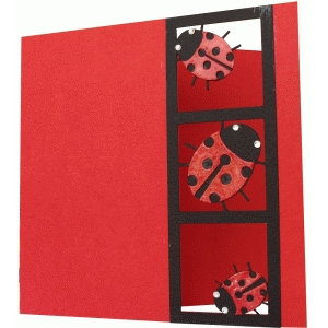card with ladybugs