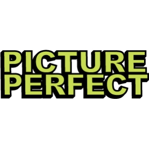 phrase: picture perfect