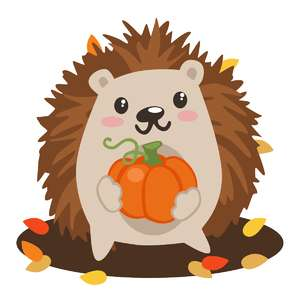 hedgehog with pumpkin