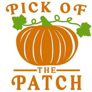 pick of the patch