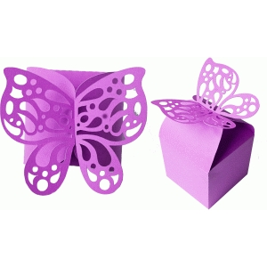 butterfly top box