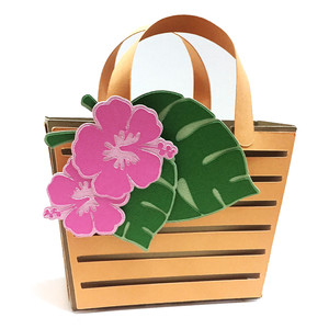 hawaii bag