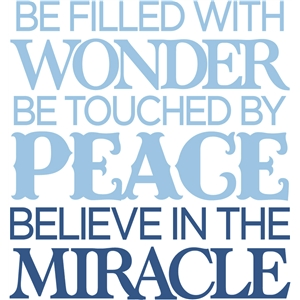 believe in miracles - vinyl quote