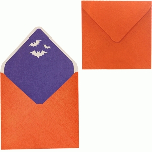 envelope with bats liner