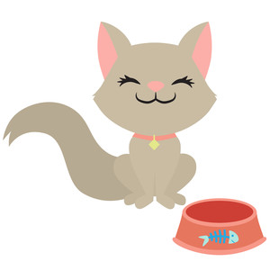 cat with food dish