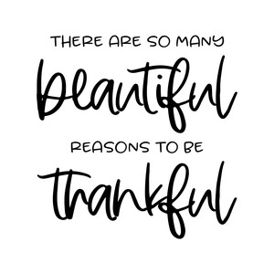 there are so many beautiful reasons to be thankful