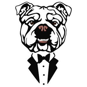 bulldog in tux