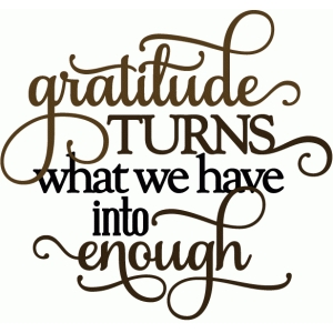 gratitude turns what we have into enough - vinyl phrase