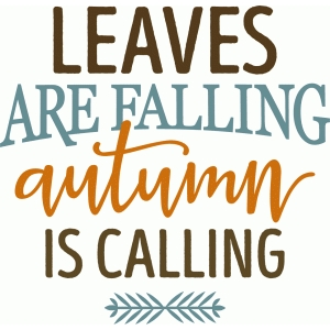leaves are falling phrase