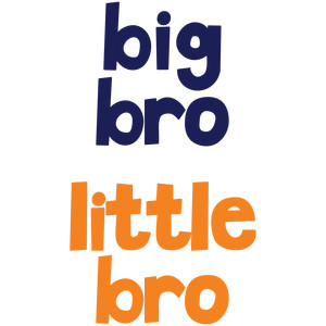 baby t-shirt set: big bro little bro
