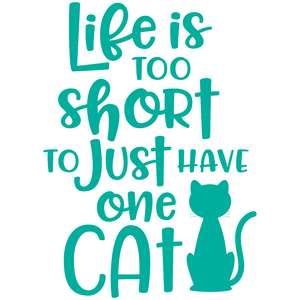 life is too short to just have one cat