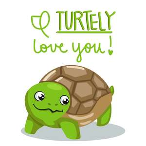 i turtley love you valentine