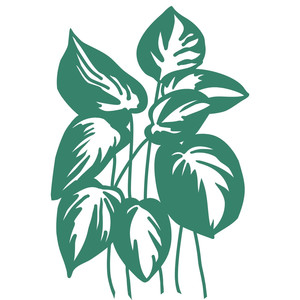 tropical variegated leaves papercut