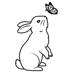 bunny with a butterfly