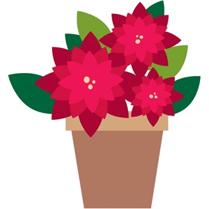 christmas poinsettia flower pot