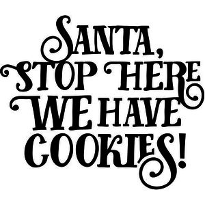 santa stop here we have cookies!
