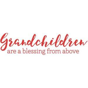 grandchildren are a blessing from above