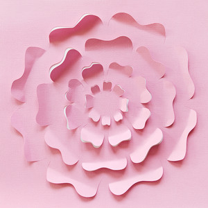 cut and bend flower background