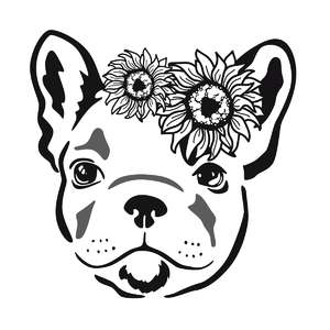 sunflower frenchie