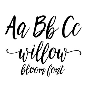 willow bloom modern calligraphy font