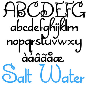 zp salt water