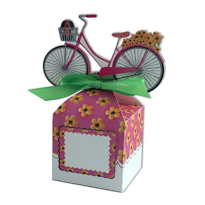 pink bike anything box