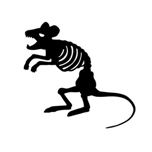 standing mouse skeleton