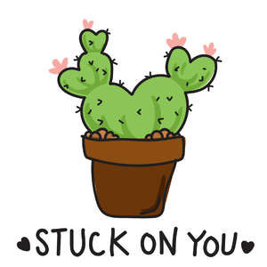 stuck on you cactus phrase