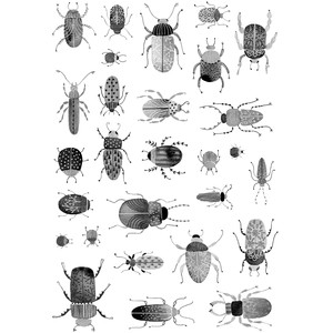 bugs and beetles stickers
