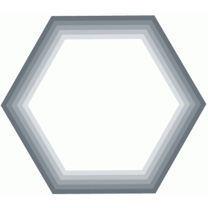 nested hexagon shapes / labels