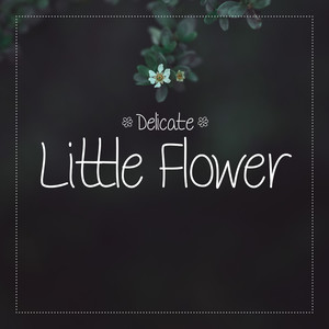 delicate little flower font