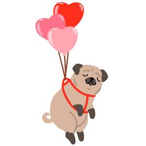 valentines pug with heart balloons