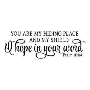 you are my hiding place and my shield
