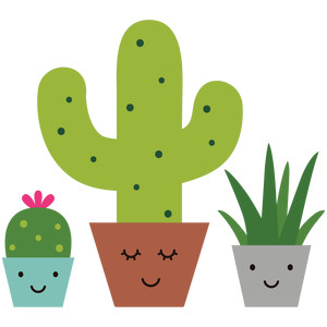 smiling succulents