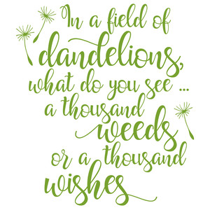 in a field of dandelions what do you see