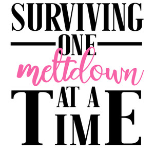 surviving one meltdown at a time
