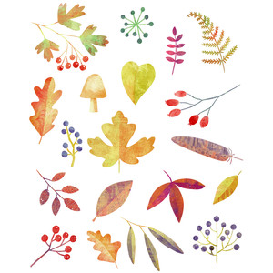 autumn leaves and berries stickers