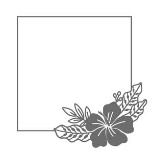 tropical hibiscus flower rectangle frame