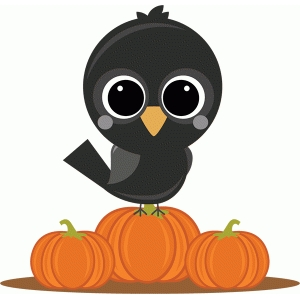 miss kate crow on pumpkins