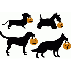 trick or treat dogs