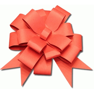 3d large package bow