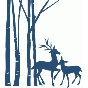birch trees with two deer