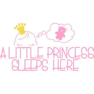 a little princess sleeps here