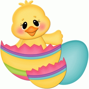 easter chick sitting in cracked egg pnc