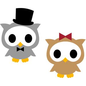 couple owls