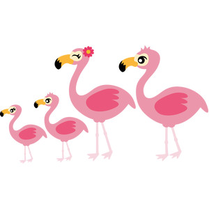 flamingos family